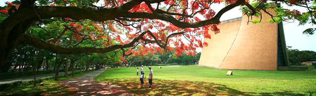 東 海 大 學 招 牌 路 思 義 教 堂( 圖 片 來 源 : 東 海 大 學 經 濟 系 )