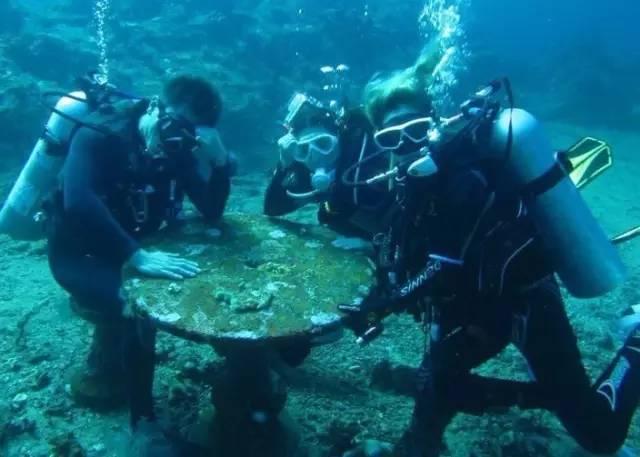 海 底 世 界 。