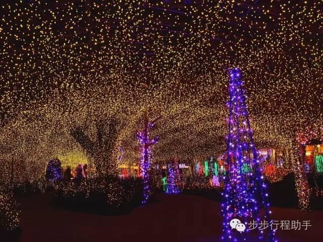 阿 蘇 農 場 所 打 造 的 燈 展 。
