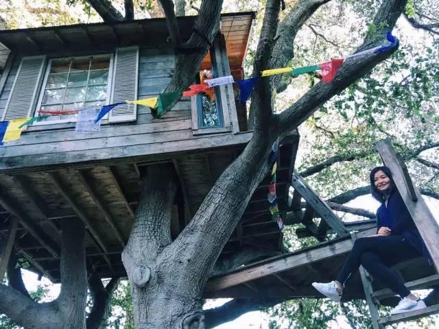 超 酷 的 樹 屋 體 驗 。
