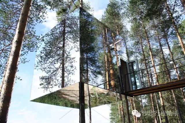 隱 身 在 森 林 中 的 樹 屋 。