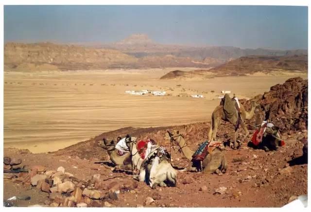 在 一 望 無 際 的 沙 漠 中 騎 著 駱 駝, 好 浪 漫 !flickr@olbernard999