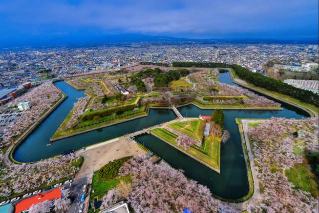 日本櫻花觀賞指南 Pic |Flickr@nans0410