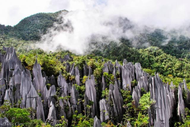 尖 峰 石 林 | Flickr:Estelle Clerc。