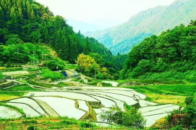 日本31處美景 Pic|Instagram@mamachan_k