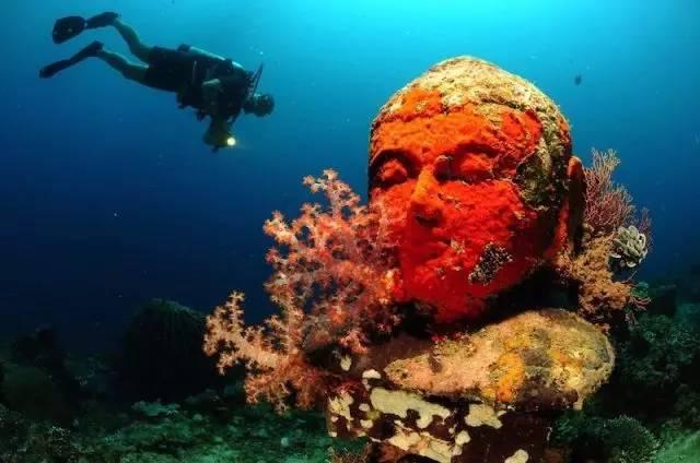 海 中 奇 景 : 大 佛 像 。