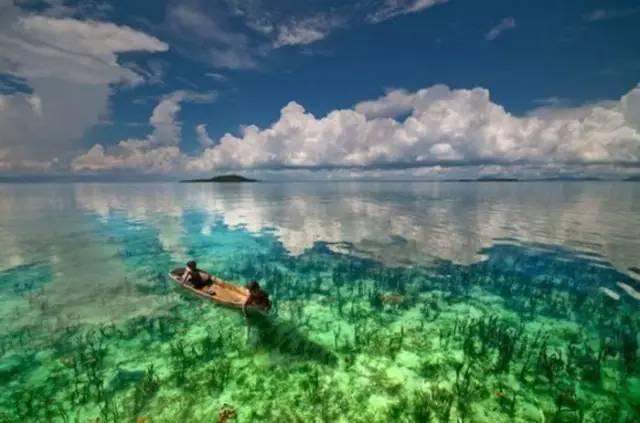 海 底 能 見 度 極 高 , 非 常 美 麗 。