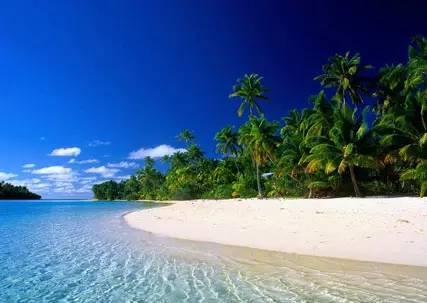 考潛水證照 美 麗 海 景 。