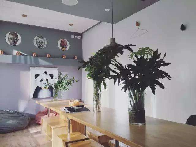 大 熊 貓 陪 你 在 北 京 喝 咖 啡 聊 是 非 。