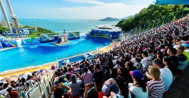 海 洋 劇 場 每 日 定 時 舉 辦 多 場 演 出 , 提 供 觀 眾 歡 樂 的 氣 氛