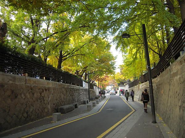 小 巷 中 處 處 都 是 最 佳 賞 楓 點( 圖 片 來 源 : goo.gl/3Ntpb1 )