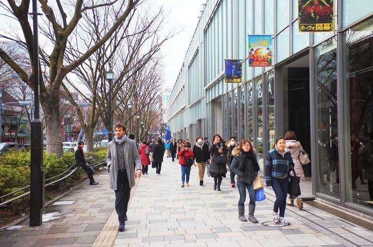 表參道的漂亮街道。|來源:matcha-jp.com