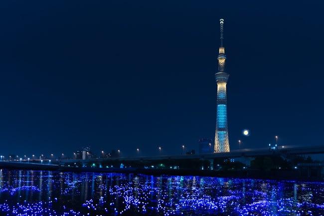 東 京 東 部 新 地 標 , 天 空 樹( 圖 片 來 源 :MOOK)