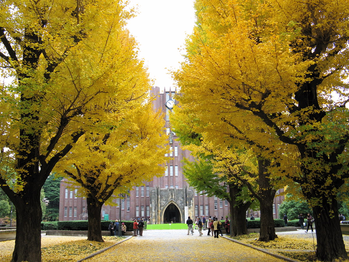 東 京 大 學 的 安 田 講 堂( 圖 片 來 源 : goo.gl/Sw21PM )