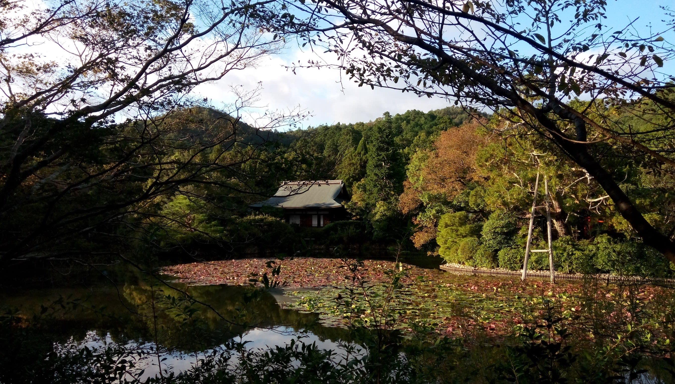 美麗的湖景庭園