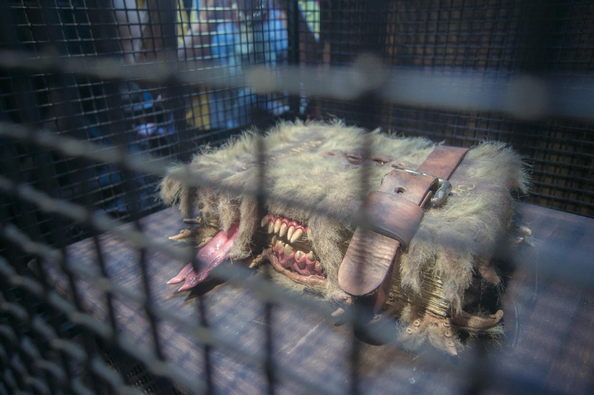 大阪環球影城哈利波特,怪獸書!他真的會一直叫跟咬!