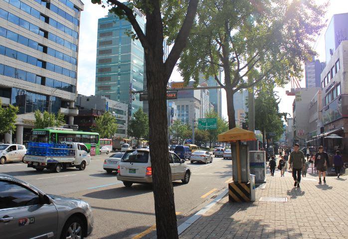 首爾市區賞楓