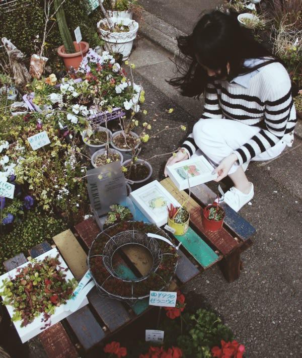 在 自 由 之 丘 偶 遇 到 的 花 店 。