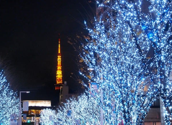 晚 上 的 東 京 塔 看 起 來 有 不 一 樣 的 美 。