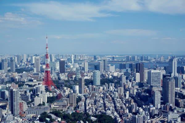 遠 眺 東 京 鐵 塔 。