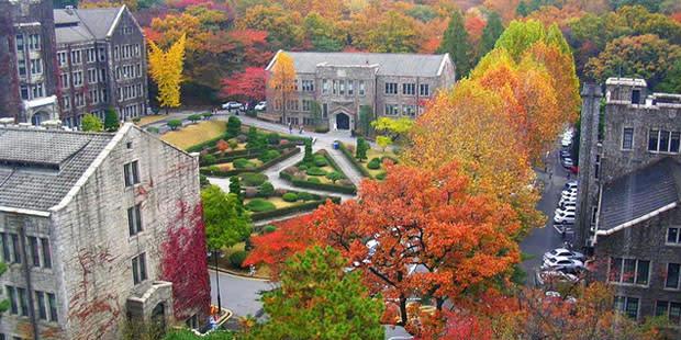 秋 季 的 延 世 大 學 ( 圖 片 來 源 : goo.gl/duSn2d )