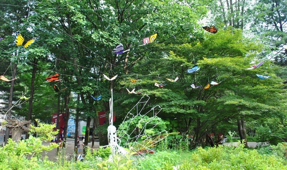 festival bươm bướm hampyeong trên đảo nami