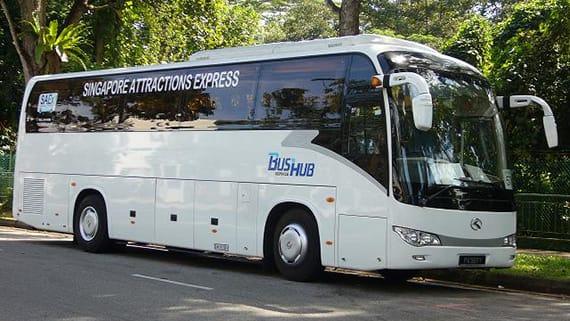 """night safari singapore"""" xe bus công cộng"""