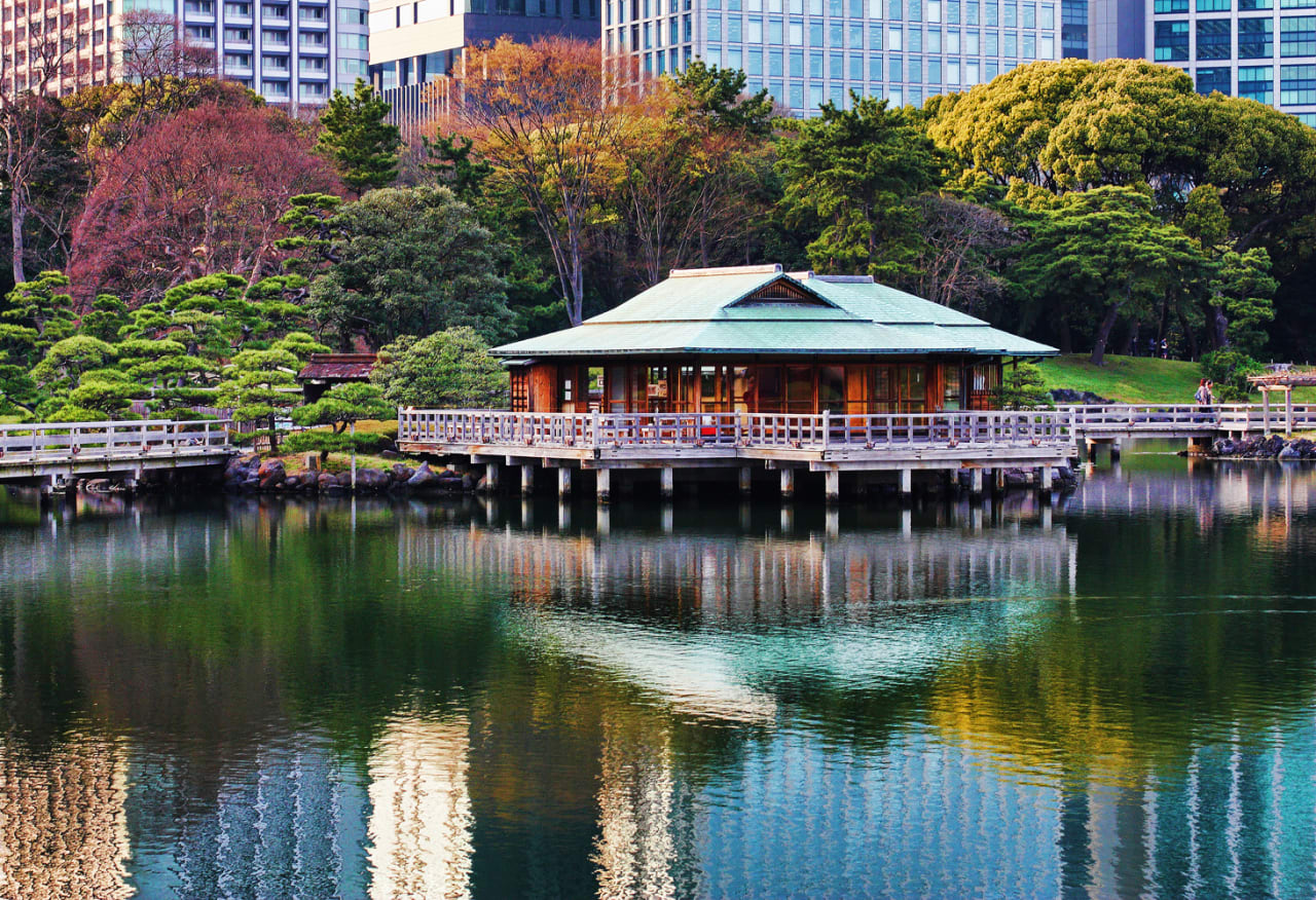ngắm hoa ở vườn hamarikyu là một ý tưởng hẹn hò ở tokyo