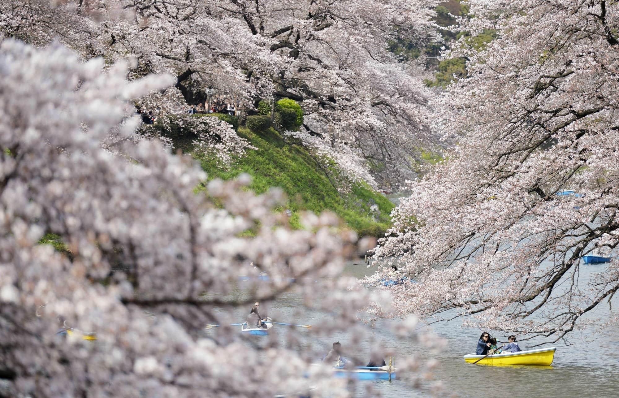 đi thuyền ở đầm chidorigafuchi là một ý tưởng hẹn hò ở tokyo