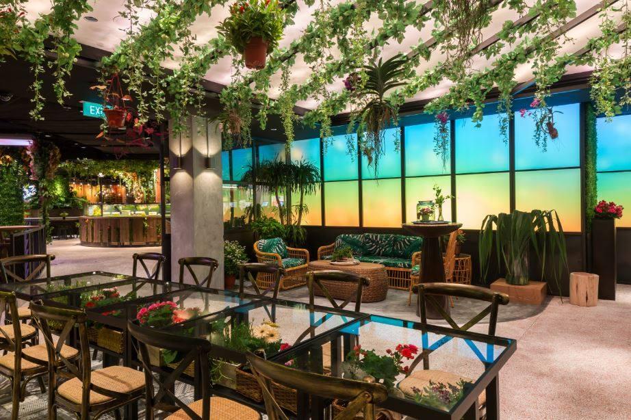 quán cafe ở singapore: cafe vườn tại picnic sg
