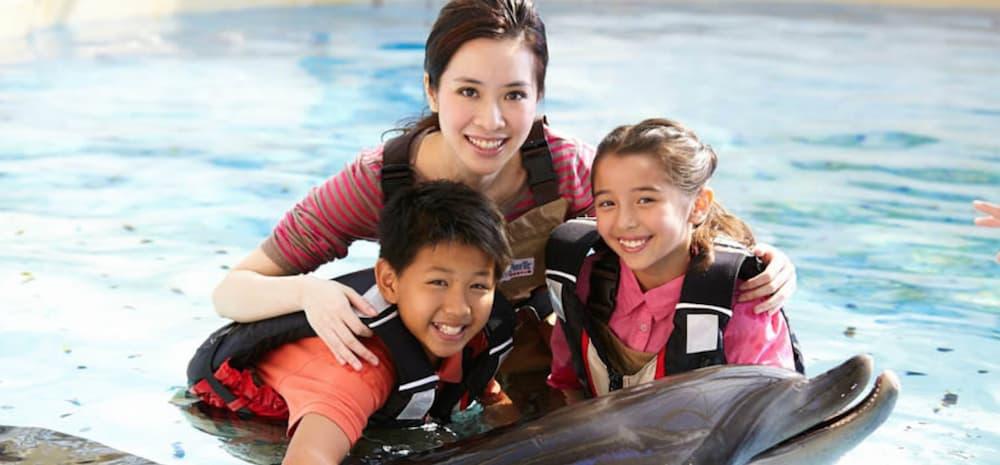 vui chơi ở công viên đại dương hong kong: gặp gỡ cá heo