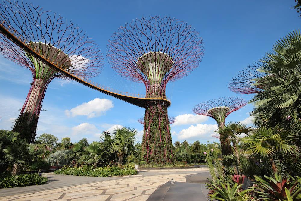 khám phá thiên nhiên ở singapore tại gardens by the bay