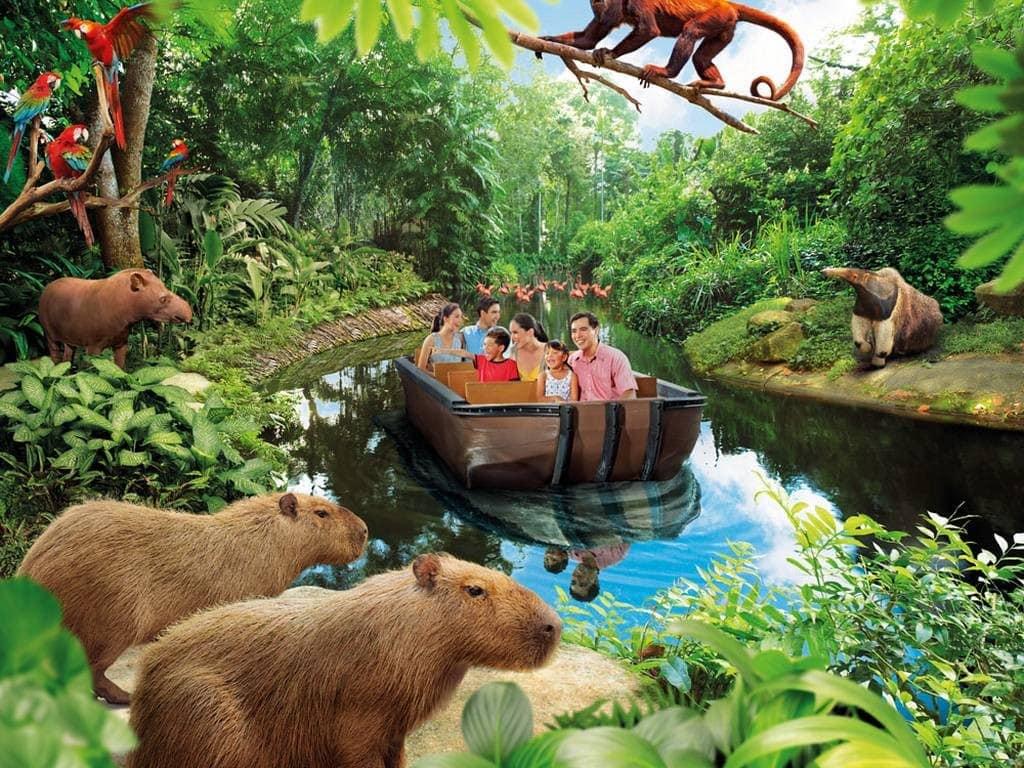 khám phá thiên nhiên ở singapore tại river safari