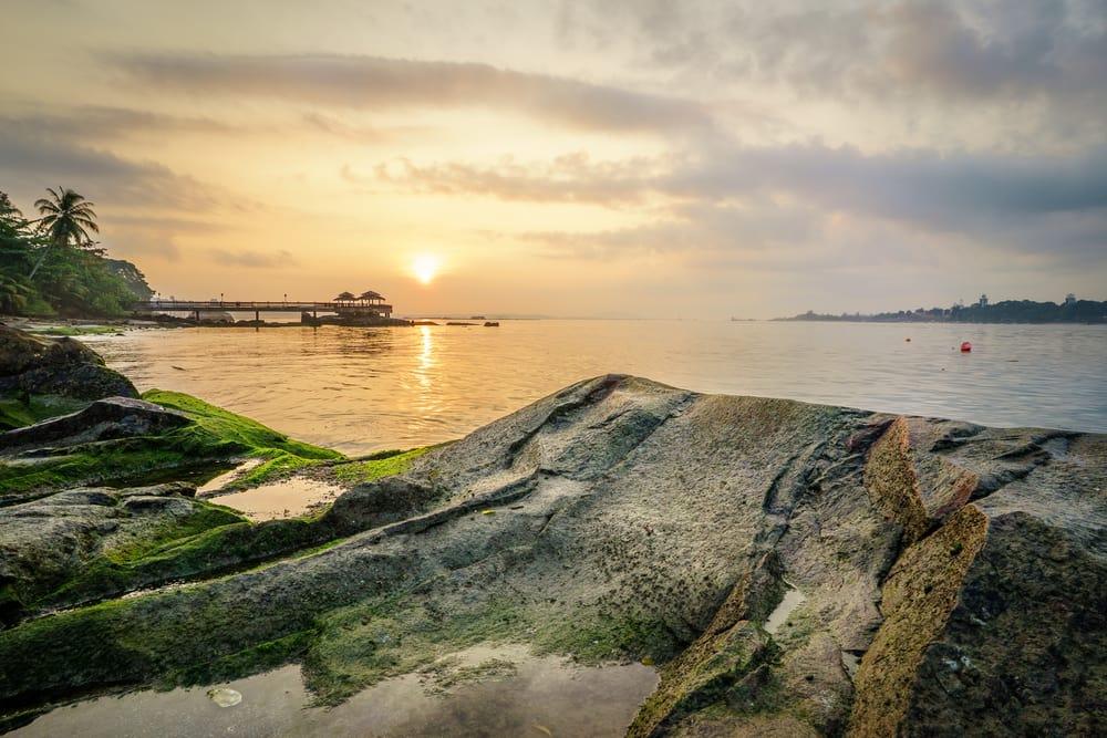 khám phá thiên nhiên ở singapore tại đảo pulau ubin