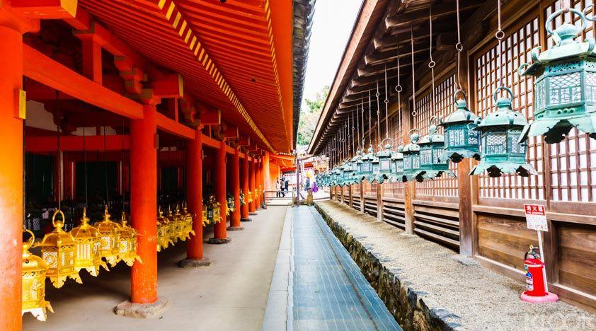 72 giờ ở osaka: đền todai-ji