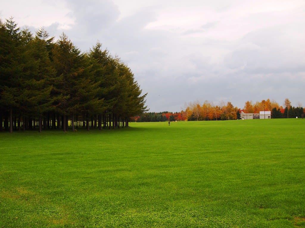 mùa thu ở hokkaido: công viên moerenuma