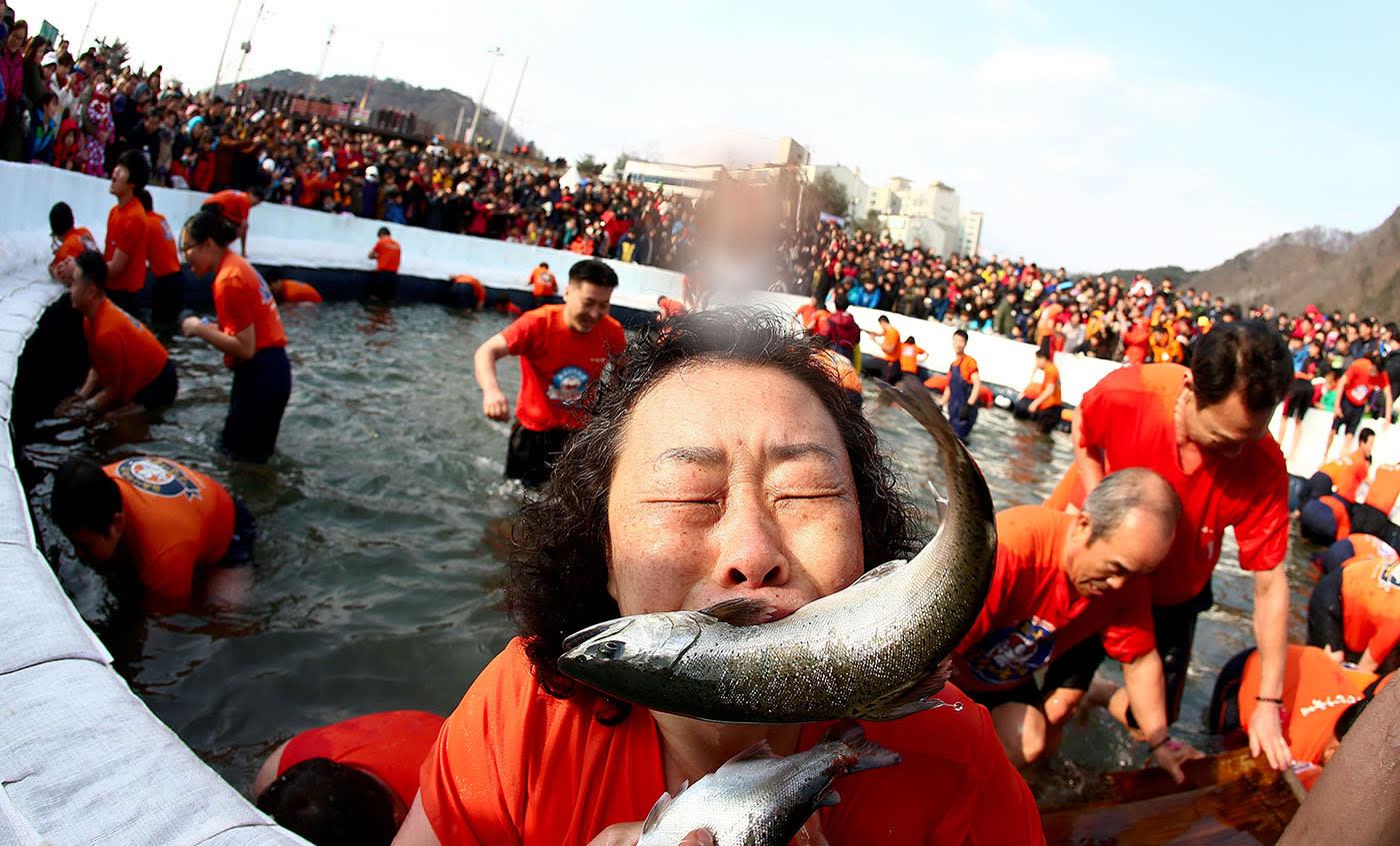 Lễ Hội Hwacheon Sancheoneo là một trong 10 lễ hội ở hàn quốc bạn phải tham gia