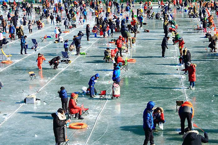 lễ hội bắt cá hồi  là một trong 10 lễ hội ở hàn quốc bạn phải tham gia