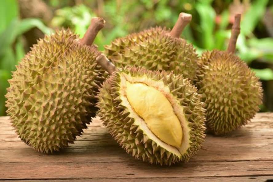 sầu riêng là một trong 30 món ăn ở singapore phải thử
