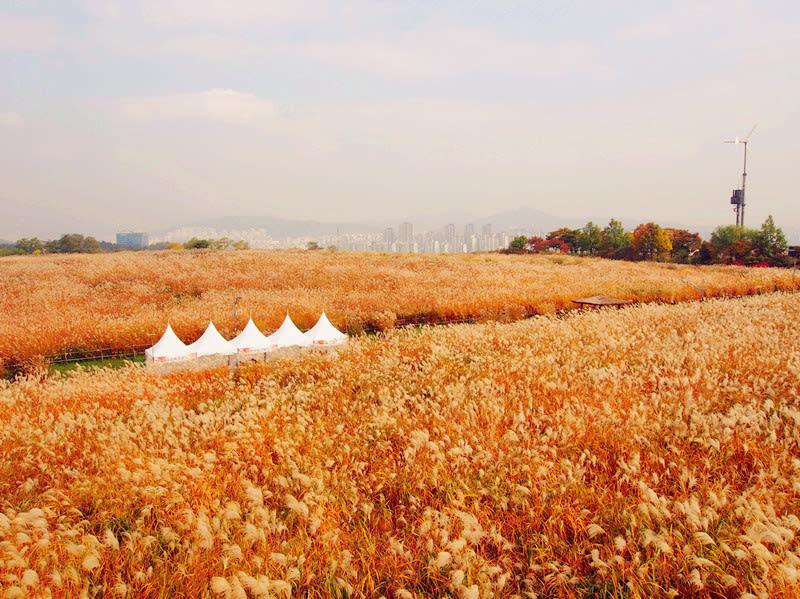 Bí kíp Klook: Hướng dẫn xin Visa du lịch Hàn Quốc từ A-Z 5