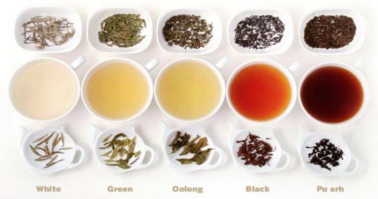có nhiều loại trà để lựa chọn khi đi đài loan