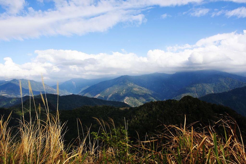ngắm lá phong ở đài loan: núi manapan