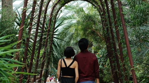thăm gardens by the bay là một trong những hoạt động tại singapore