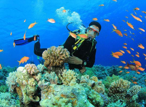 tham gia lặn biển khi du lịch tự túc đài loan