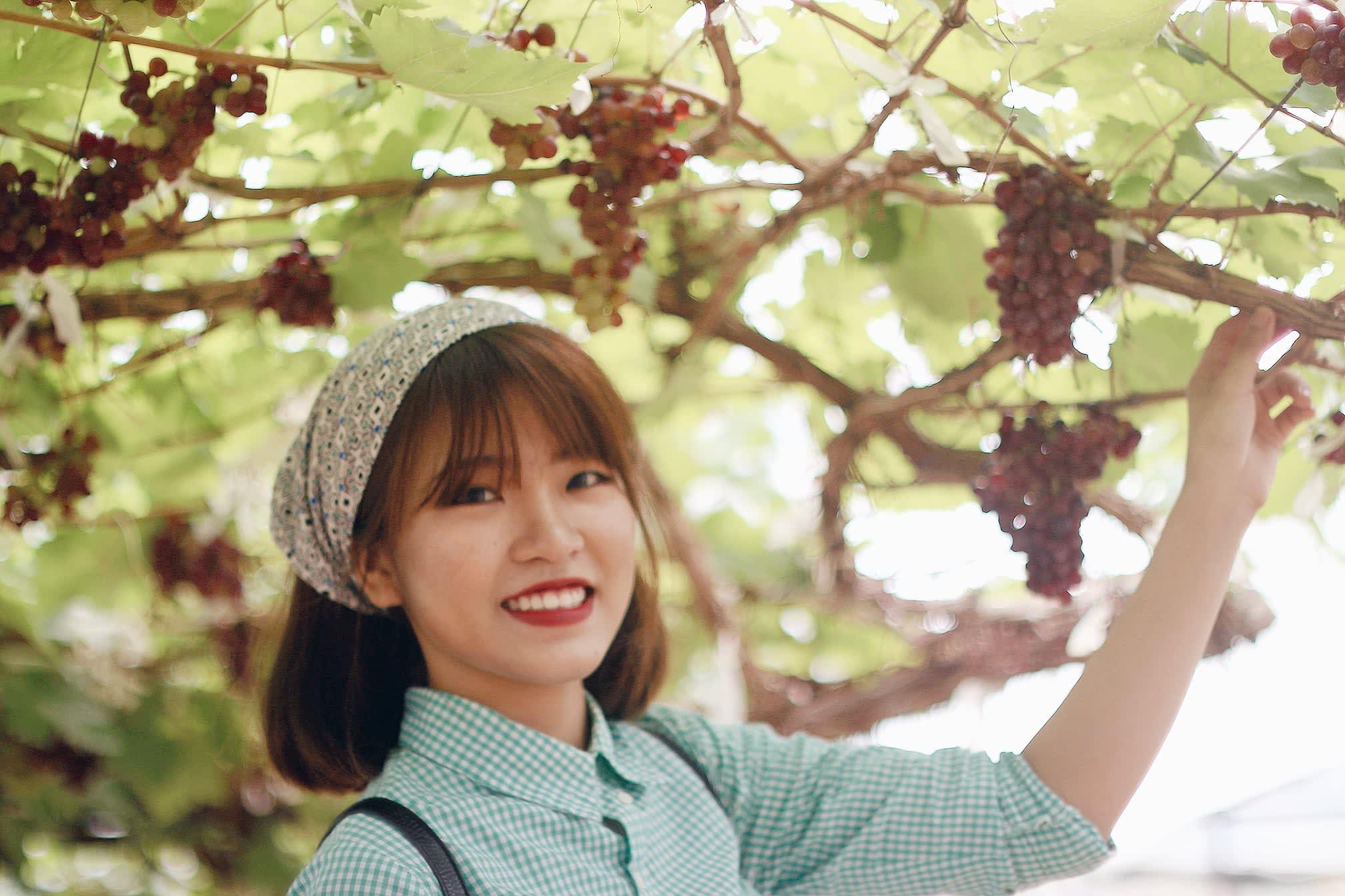 du lịch khao yai - PB valley khao yai winery