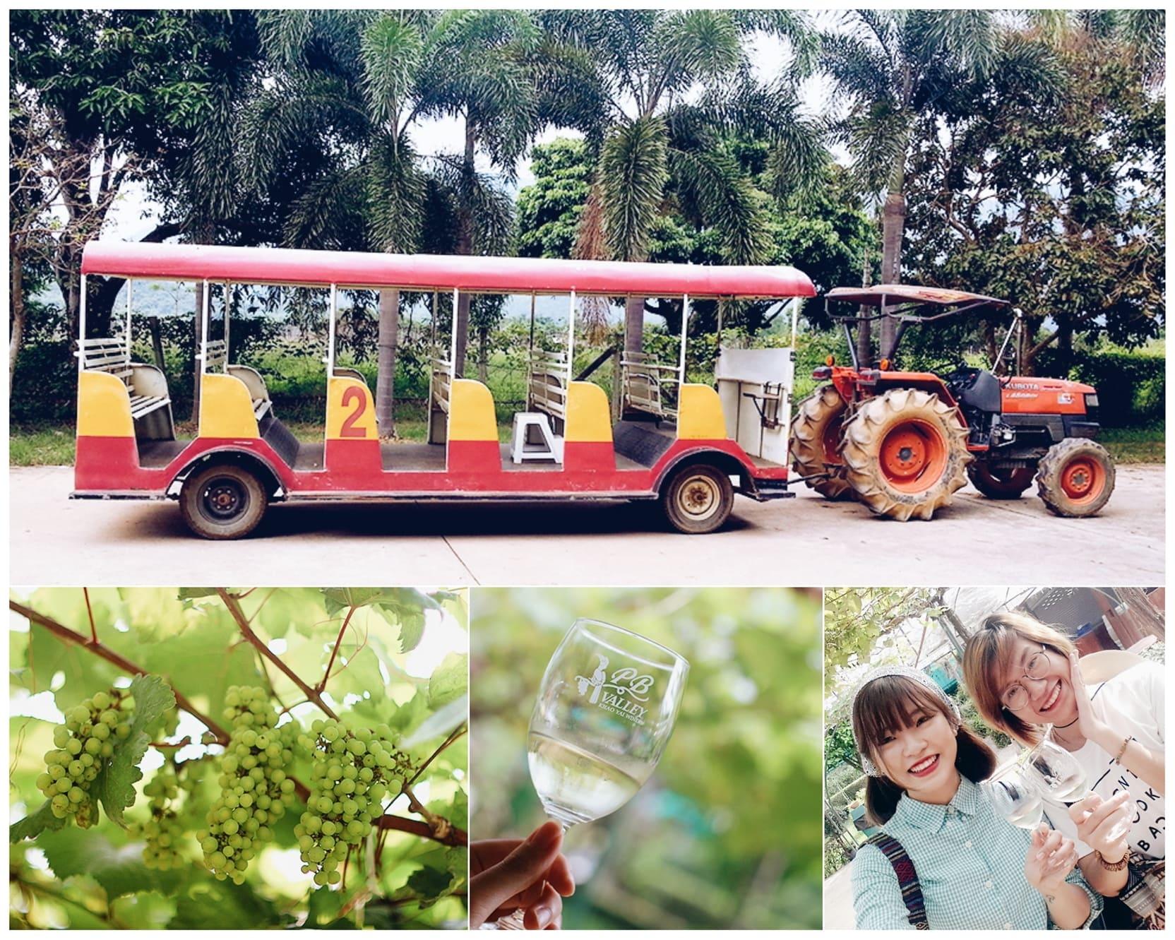 du lịch khao yai - xe wine tour