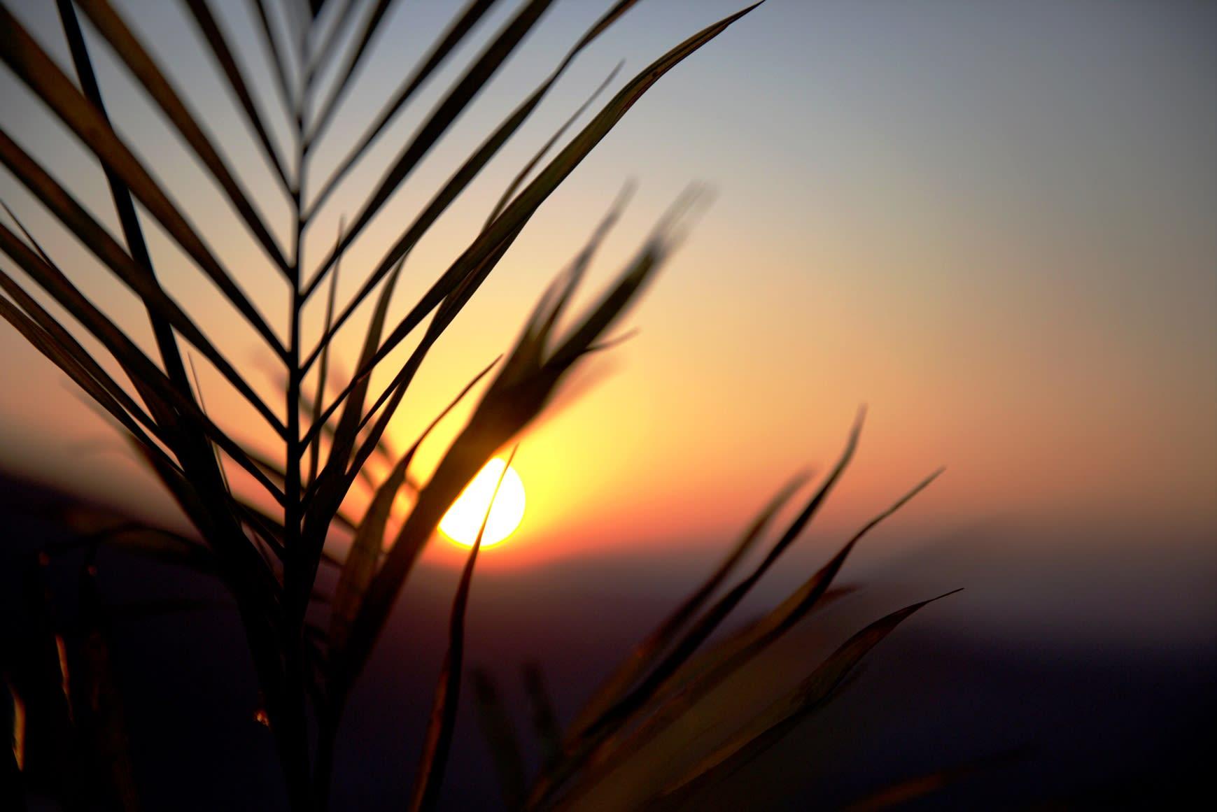 du lịch nepal: đón mặt trời mọc tại himalayan front hotel