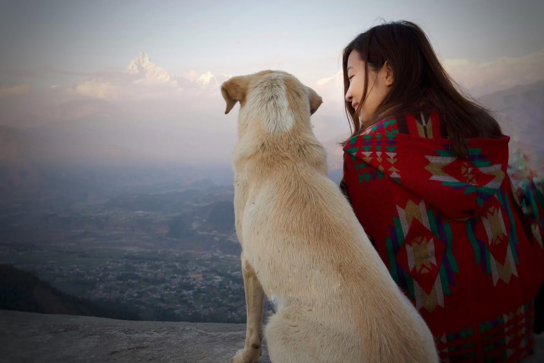 du lịch nepal: bạn chó ở sarangkot