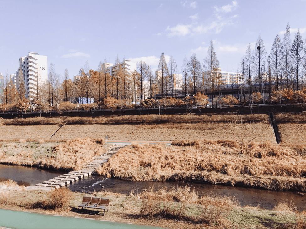 thăm công viên haneul trong chuyến du lịch hàn quốc 6 ngày 5 đêm