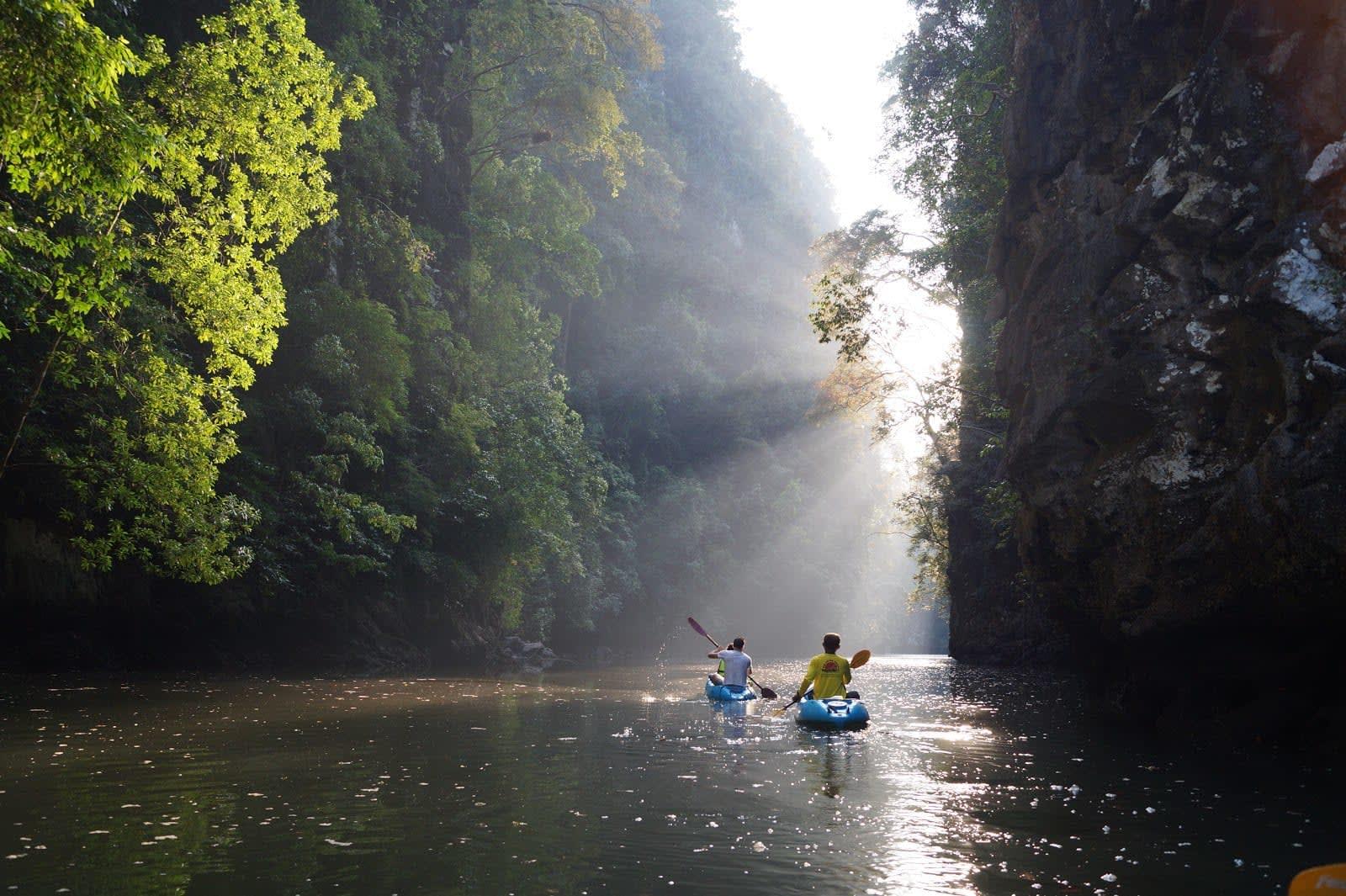 kinh nghiệm đi krabi chèo thuyền kayak tại rừng ngập mặn